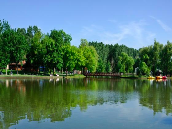 Grand Est domaine sur plus de 60 hectares avec étangs