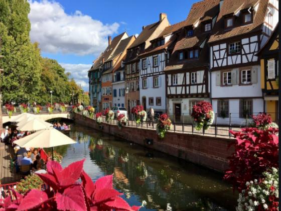 Alsace Camping mois de 50 emplacements